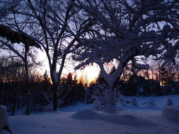 2010 Snowpocalypse at Sunset