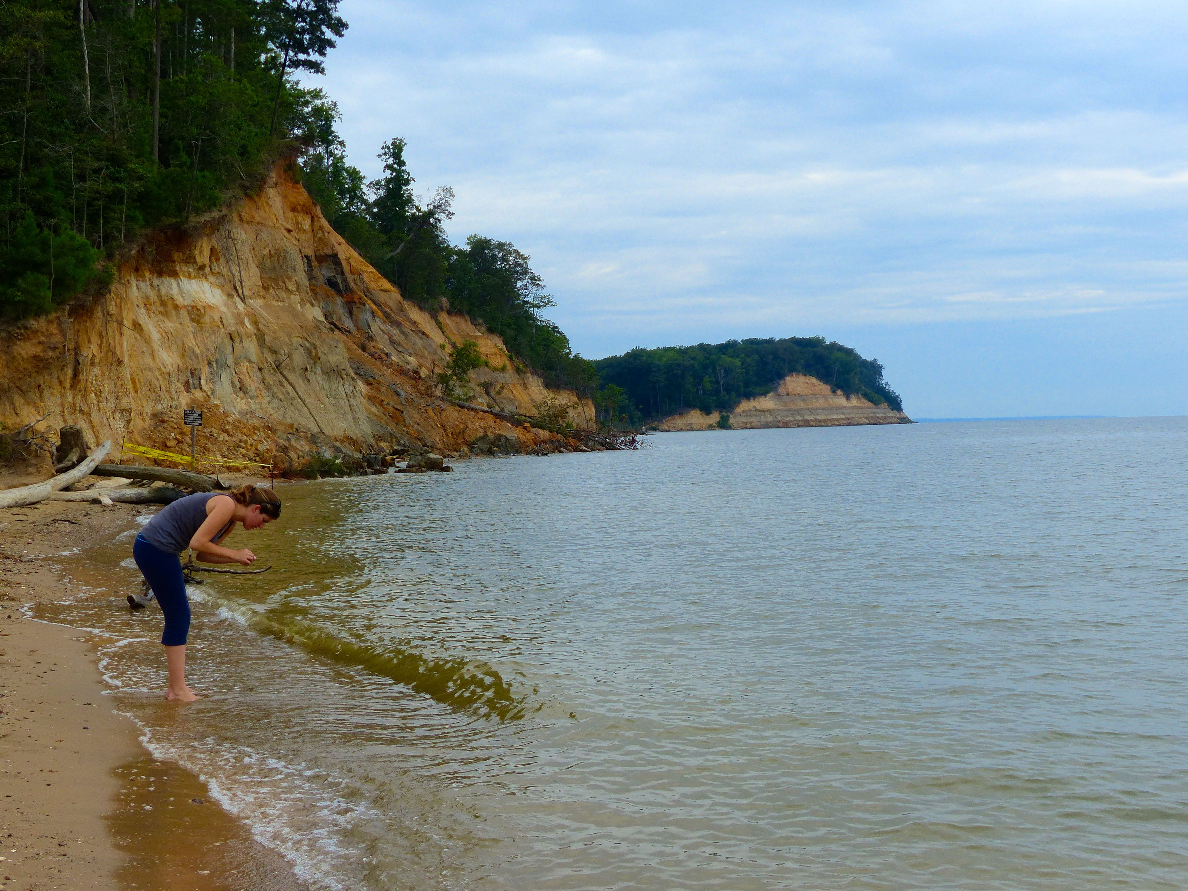 Calvert Cliffs Fossil Hunting Growing Up I Visited Maryland S County Beaches