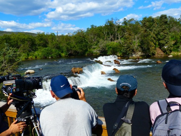 Brooks Falls- photographers and bears