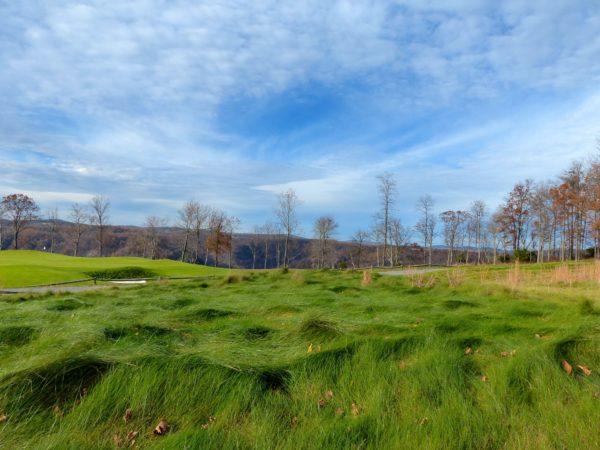 Primland- golf greens