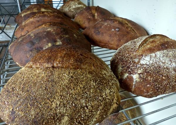 Sub Rosa- bread 2