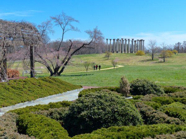 National Arboretum- Capitol Columns from afar 2