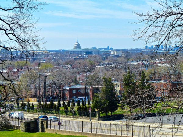 National Arboretum- Capitol view