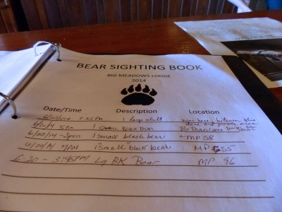 Shenandoah National Park- Big Meadow- bear sightings