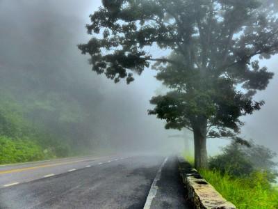 Shenandoah National Park- Skyline Drive fog