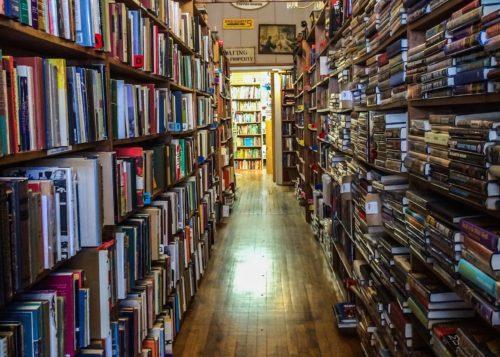 DC Day Trip to Manassas- Prospero's Books 3